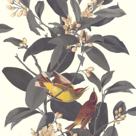 Papier peint BRANCHE OISEAU GRIS - Rétro Vintage - Lutèce