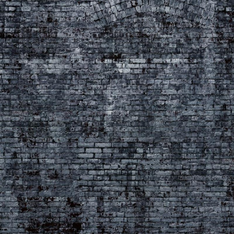 Panoramique Mur de Briques XXL gris foncé - FACTORY III - Rasch - 940954