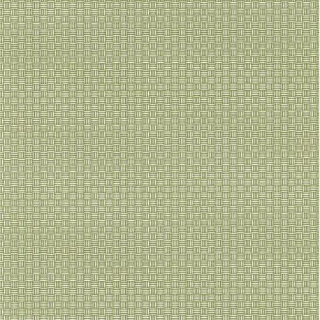 Papier peint Natte Tressage vert – JUNGLE - Caselio