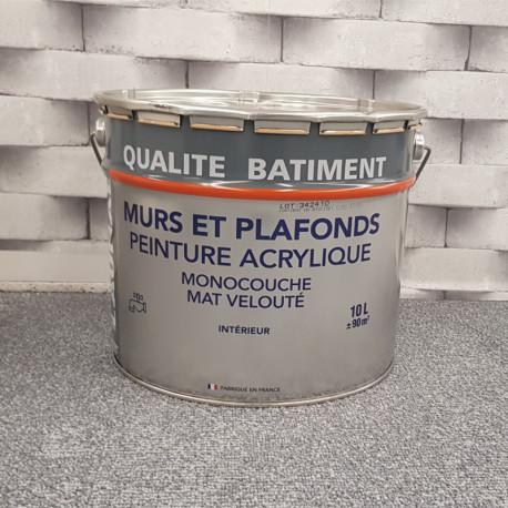 """Peinture intérieure spéciale mur """"QUALITE BATIMENT"""" blanc mat velouté - THEOLAUR - 10L"""