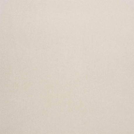 Papier peint à motif DANDY UNI GALLANT gris B72340841 - BLOSSOM - Casamance