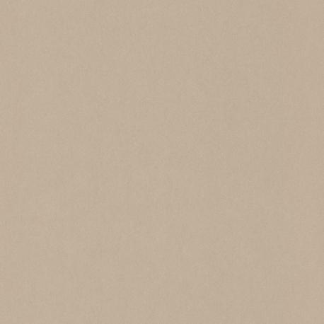 Papier peint Uni beige - 1930 - Casadeco - MNCT60401000